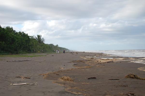 Plage caraibe Costa Rica
