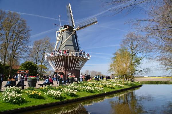 Moulin à Keukenhof