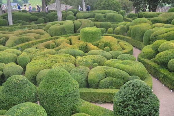 Beauté des jardins de Marqueyssac
