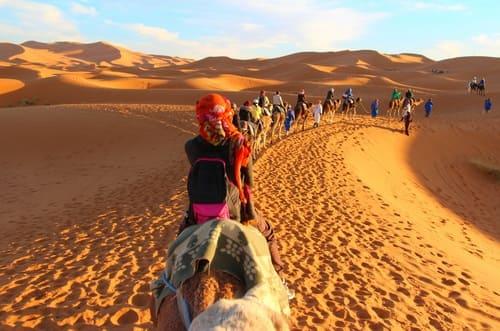 balade chameau désert maroc