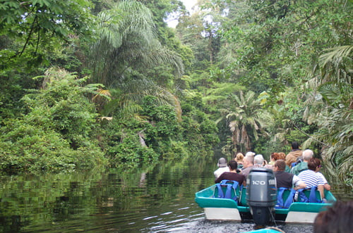 Parc de Tortuguero