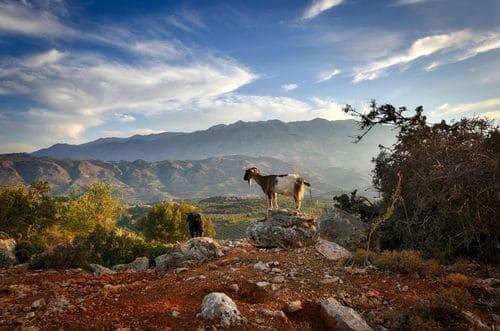 Balade en Crète