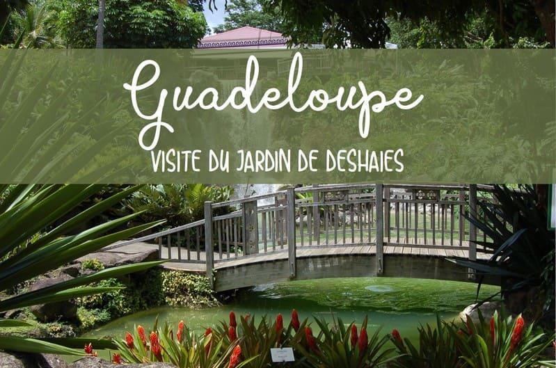 Viste jardin Deshaies