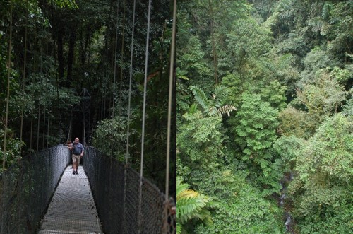 Randonnée costa rica ponts