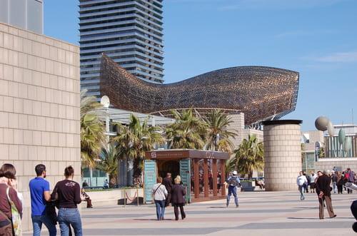 Barceloneta gros poisson