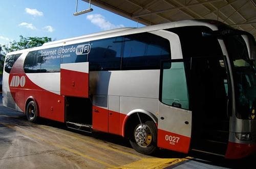 Bus Ado pour Cancun
