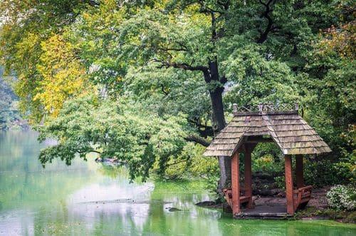 Central Park au calme