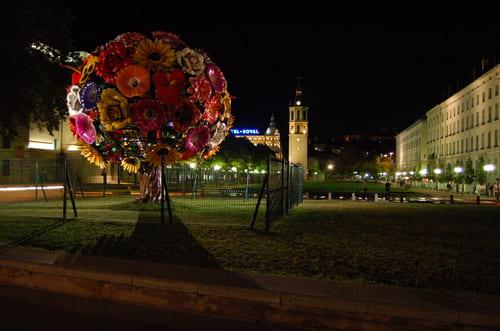 Bouquet de fleur à Lyon
