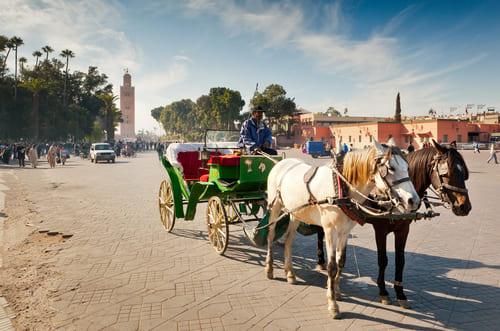 calèche prix pour Marrakech