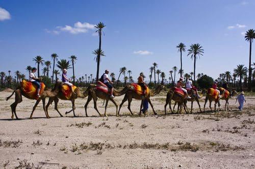 activités marrakech