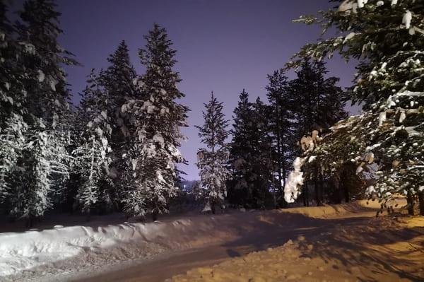 paysage Rovaniemi