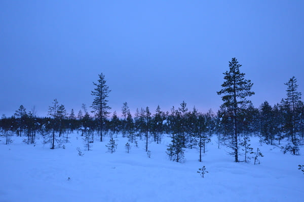 photo laponie neige