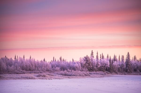 Les paysages enneigés de Laponie en plein hiver