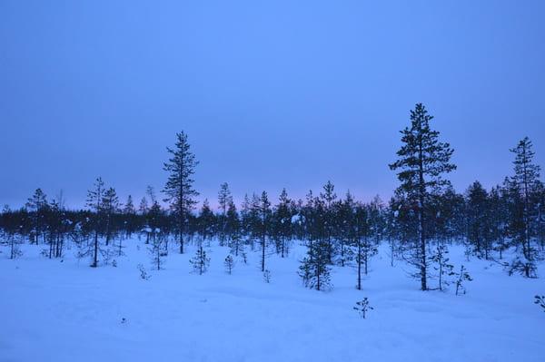 Les paysages de rovaniemi en Finlande
