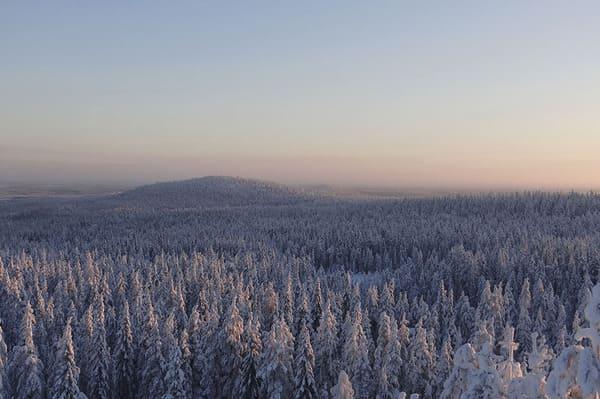colline de Ounasvaara à Rovaniemi