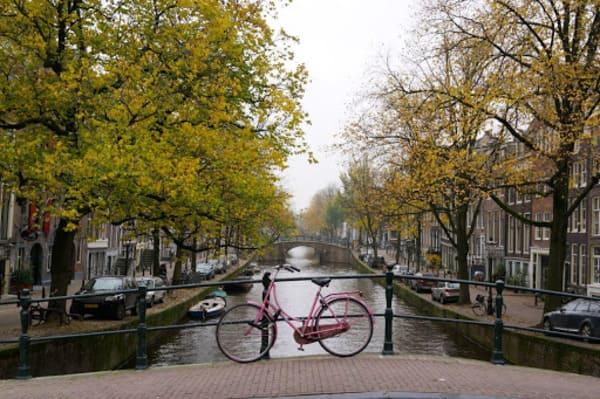 Meilleur quartier pour se loger à Amsterdam
