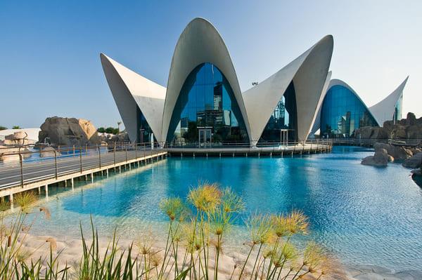 Visite à Valencia