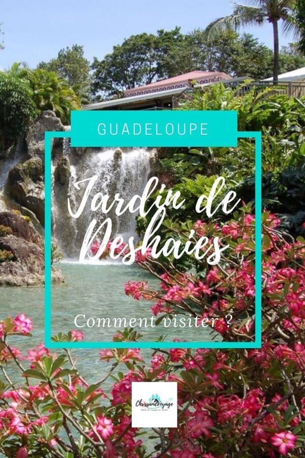Visite du jardin de Deshaies en Guadeloupe.
